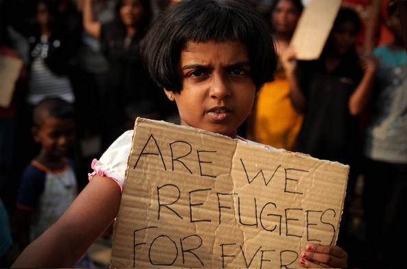 Refugee 12