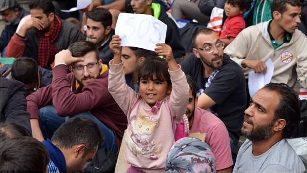 Refugee 25